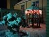 christmas-photo-7
